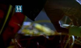 Fringe-1x15-Inner-Child_002
