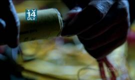 Fringe-1x15-Inner-Child_004